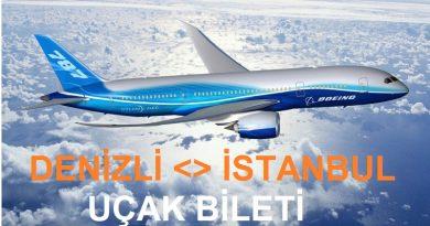 denizli-istanbul-ucak-bileti